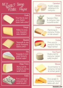 basgann-hangi-sarap-peynir